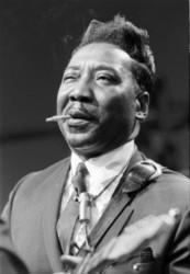 Listen to Muddy Waters Mannish boy song online from Jazz and Blues Music Hits collection for free.