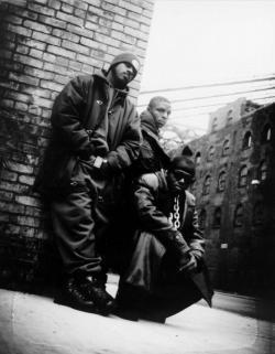 Listen to Naughty By Nature O.P.P. song online from Rap Hits collection for free.