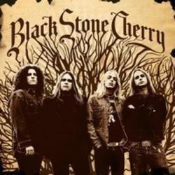 Besides Kastis Torrau music, we recommend you to listen online Black Stone Cherry songs.