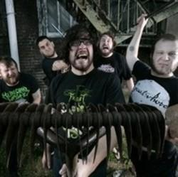 Besides Halsey music, we recommend you to listen online The Black Dahlia Murder songs.